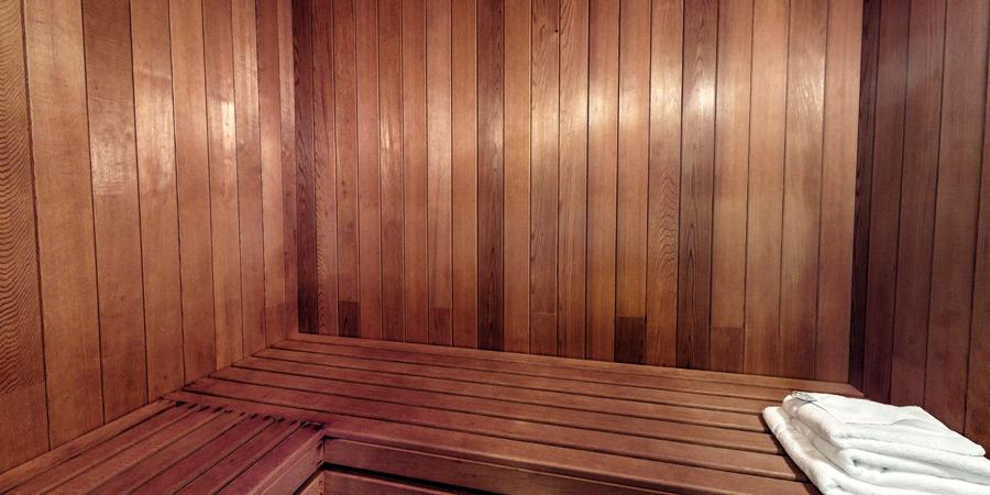 silver-birch-house-sauna-900x450