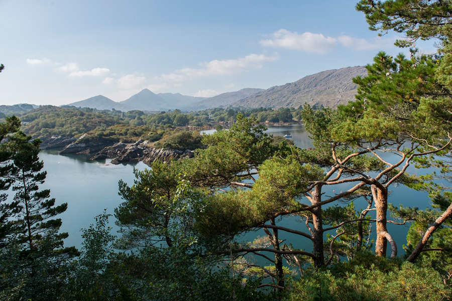 cashelfean-holiday-houses-water-through-trees-900x600